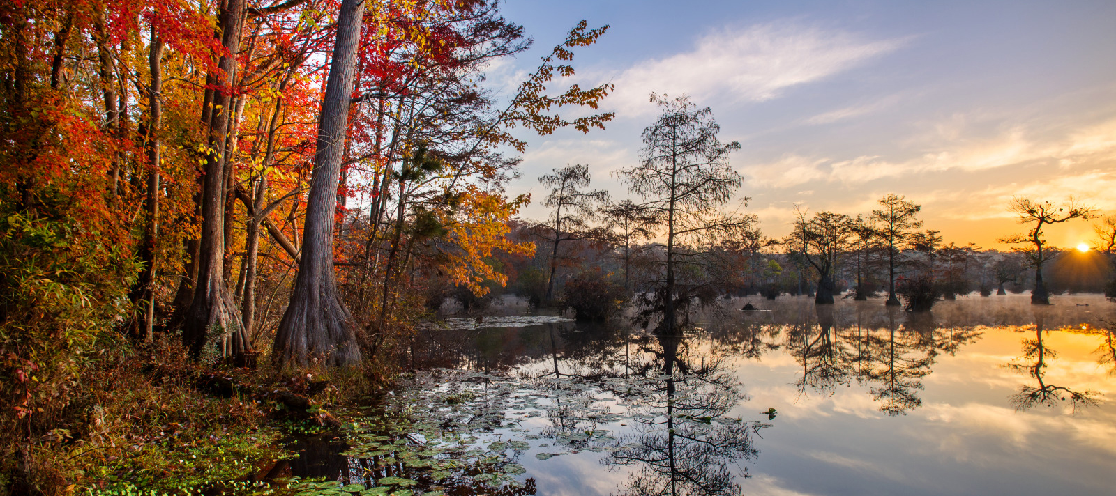 Merchant's Mill Pond, fall foliage and cypress trees with reflection on water at dusk