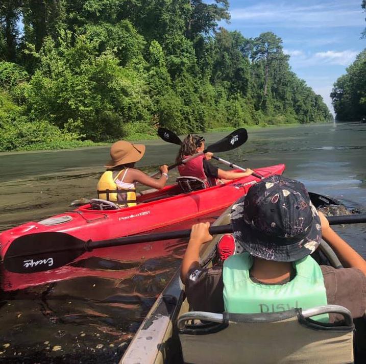 Dismal Swamp State Park