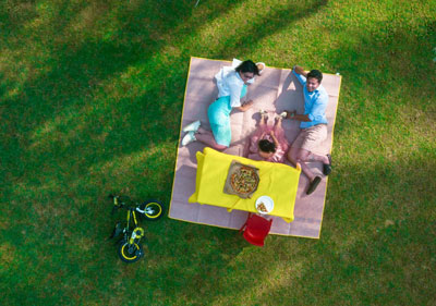 aerial family picnic in the park