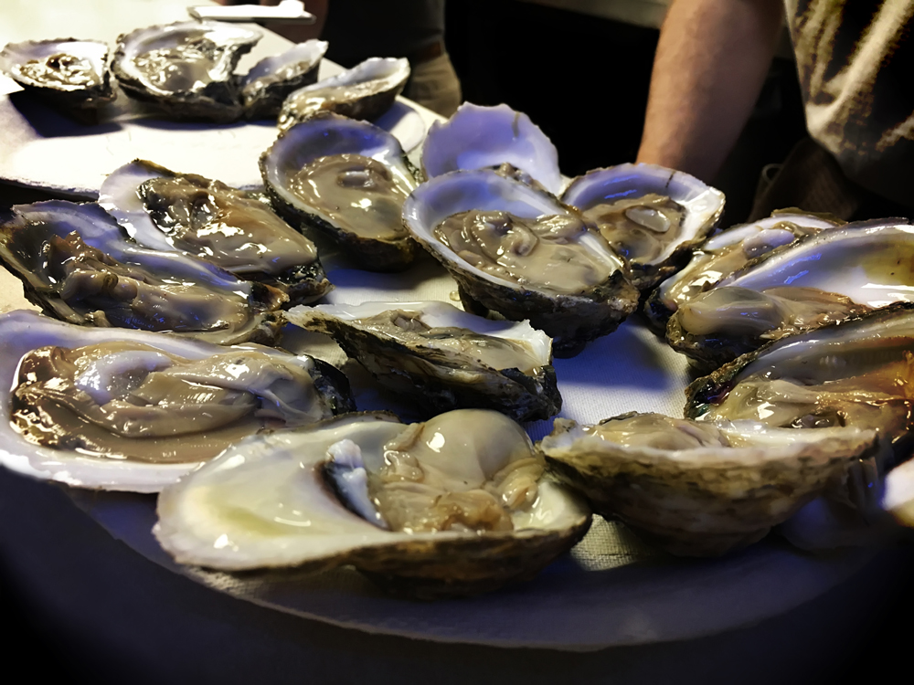 plate of shucked raw oysters