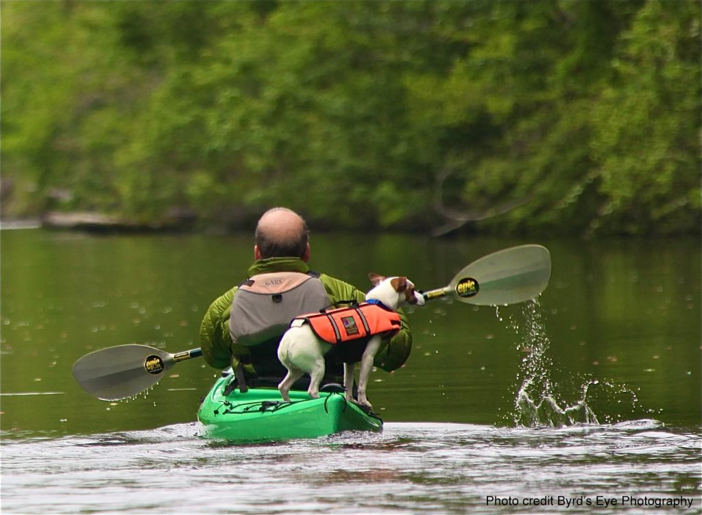 Paddle the Dismal Swamp Canal with your best friend.