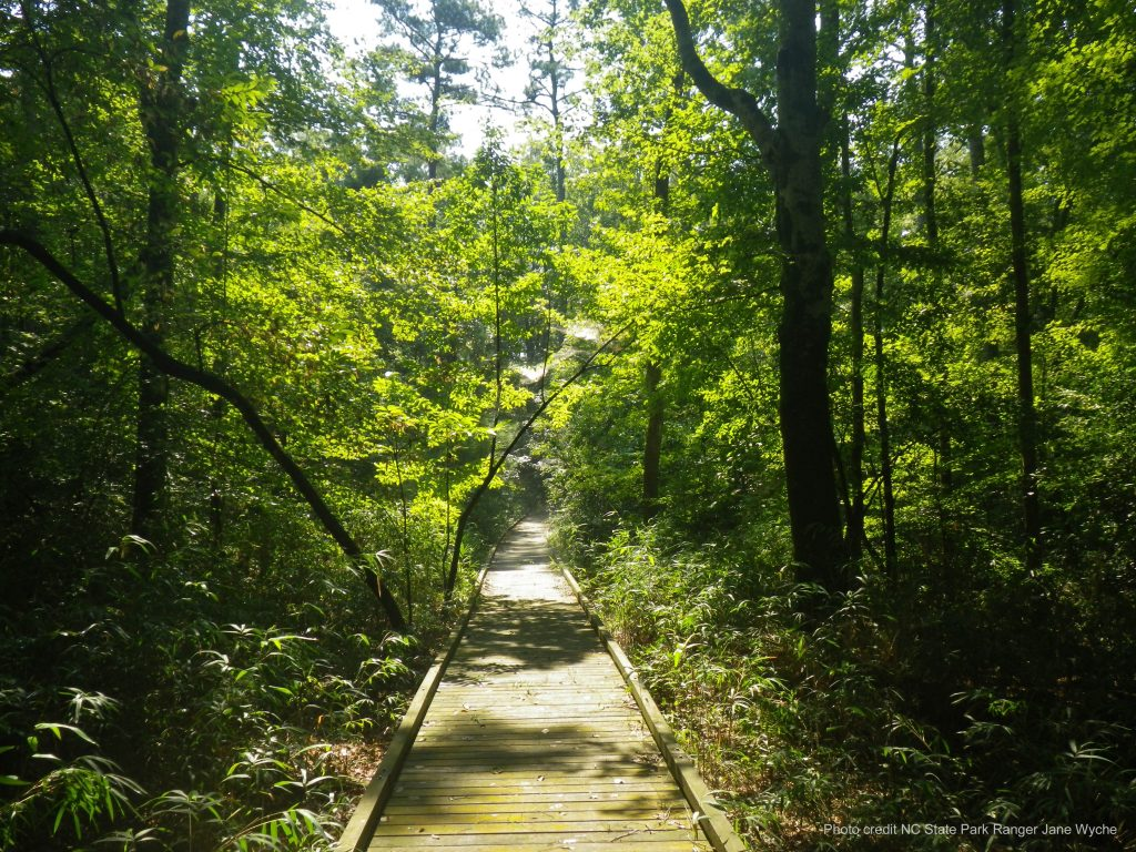 Merchant Millpond's Lassiter Trail Foot Bridge