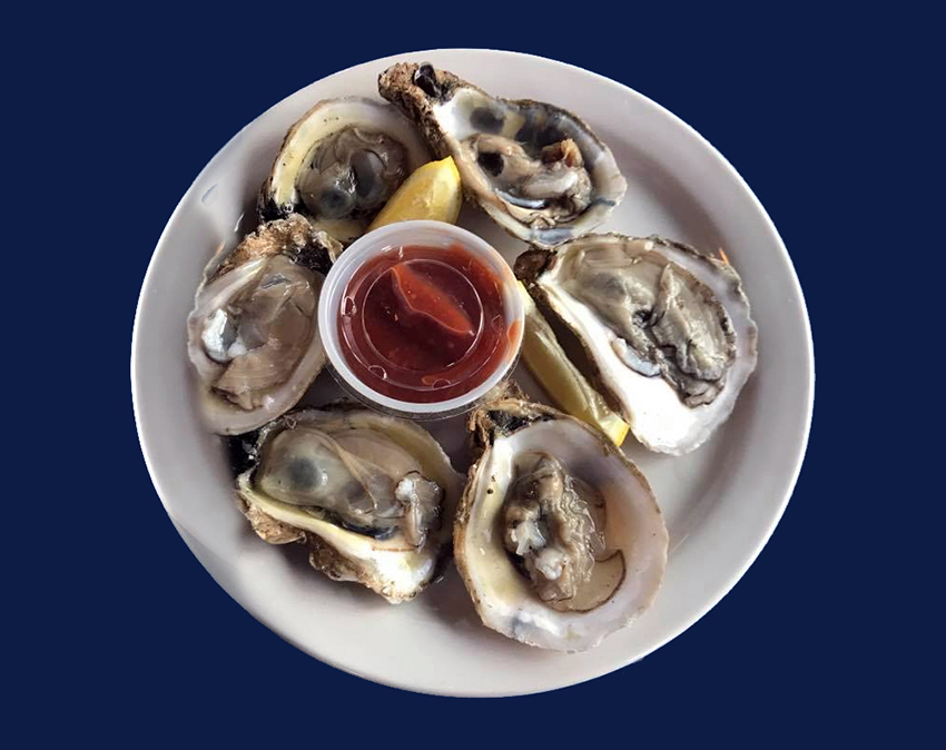 plate of raw oysters and sauce